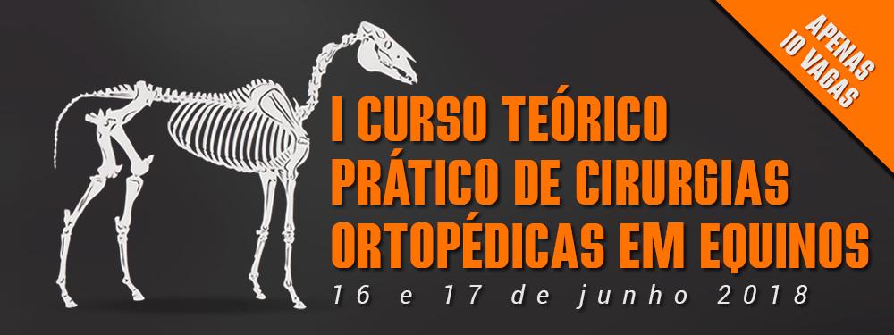 I Curso Cirurgia Ortopédica em Equinos